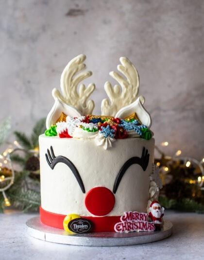 White chocolate Christmas novelty cake