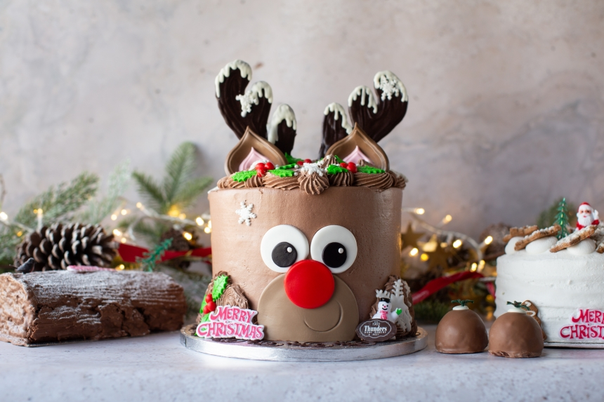 Reindeer Novelty Christmas cake