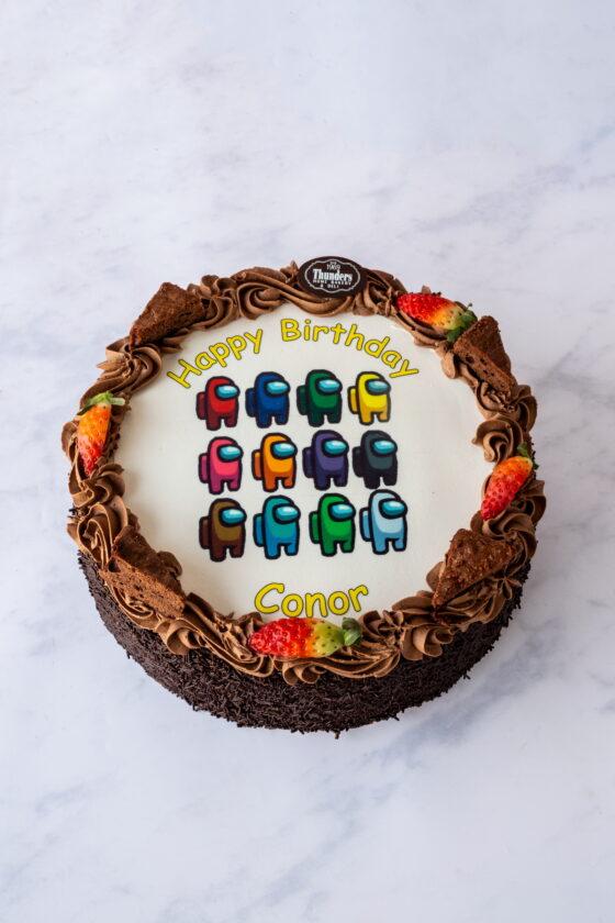 Thunders Chocolate Fudge Picture Cake